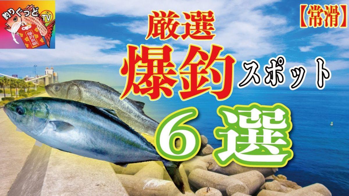 【行けば釣れる釣場6選】常滑釣りスポット【厳選】